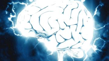 brain-1845962_960_720