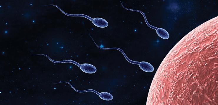 fertilityastrology