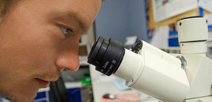 laboratory-infertility