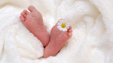 baby-718146_1920